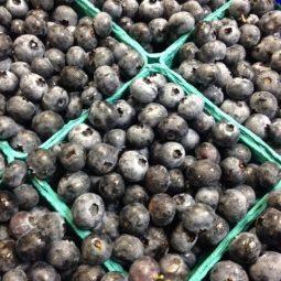 4 corners blueberries